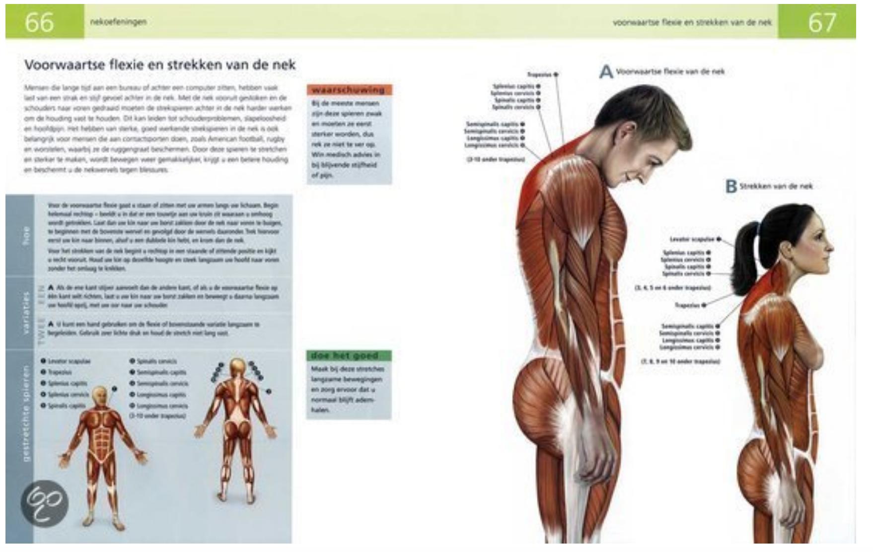 Rek En Strekoefeningen.Boek Anatomie Van Rek Strekoefeningen Door Ken Ashwell